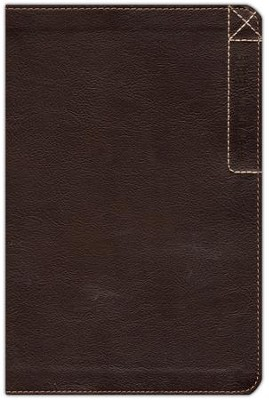 NLT Every Man's Bible Explorer Edition, Leatherlike  -     Edited By: Dean Merrill     By: Stephen Arterburn
