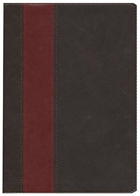 HCSB Life Application Study Bible TuTone leatherlike brown/tan indexed  -