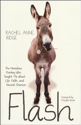 Flash: The Homeless Donkey Who Taught Me about Life, Faith, and Second Chances  -     By: Rachel Ridge