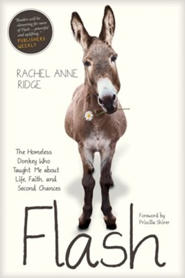 Flash: The Homeless Donkey Who Taught Me About Life,  Faith, and Second Chances  -     By: Rachel Anne Ridge