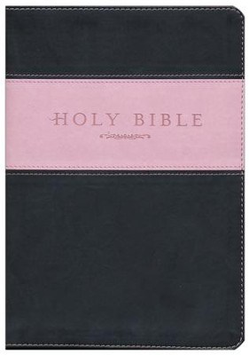 NLT Holy Bible, Giant Print TuTone Imitation Leather, pink/brown Indexed  -