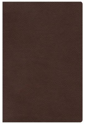 HCSB The Study Bible for Women, Chocolate Genuine Leather Thumb-Indexed  -