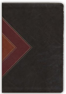 NLT Illustrated Study Bible--soft leather-look, brown/tan (indexed)  -