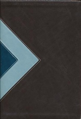 NLT Illustrated Study Bible--soft leather-look, teal/chocolate (indexed)  -