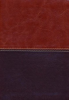 HCSB Large Print Compact Bible, Brown and Tan LeatherTouch  -