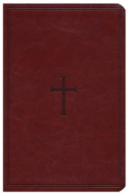 HCSB Large Print Personal Size Bible, Brown LeatherTouch  -