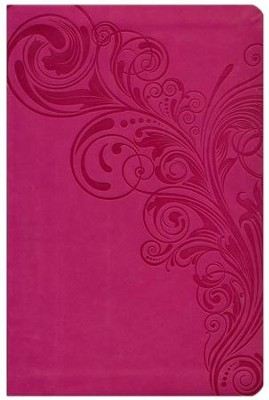 HCSB Large Print Personal Size Bible, Pink LeatherTouch, Thumb-Indexed  -