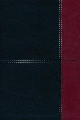 HCSB Large Print Ultrathin Reference Bible, Black and Burgundy LeatherTouch, Thumb-Indexed  -