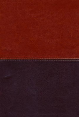HCSB Large Print Ultrathin Reference Bible, Brown and Tan LeatherTouch  -