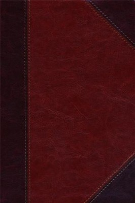 HCSB Large Print Ultrathin Reference Bible, Classic Mahogany LeatherTouch  -