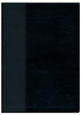 NLT Every Man's Large-Print Bible--imitation leather, black/onyx  -     Edited By: Stephen Arterburn, Dean Merrill