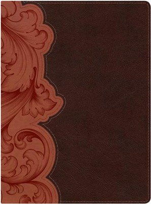 KJV Study Bible--soft leather-look, dark umber/sienna (indexed)  -