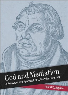 God and Mediation: Retrospective Appraisal of Luther the Reformer  -     By: Paul O'Callaghan