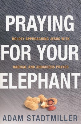 Praying for Your Elephant: Boldly Approaching Jesus with Radical and Audacious Prayers  -     By: Adam Stadtmiller