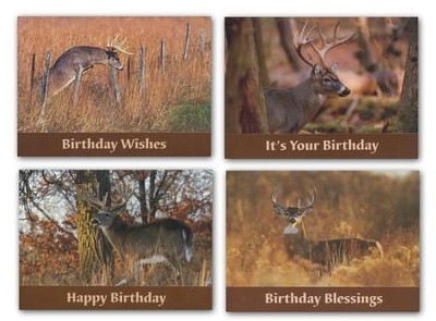 Dream Bucks Birthday Cards, Box of 12  -