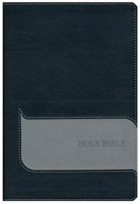 NIV Understand the Faith Study Bible--imitation leather, black/gray  -