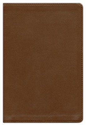 NIV Compact Bible, Giant Print, Brown  -     By: Zondervan