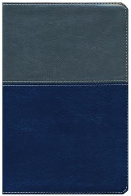 NKJV Evangelism Study Bible - Imitation Leather Gray/Blue   -     By: Evantell Inc.