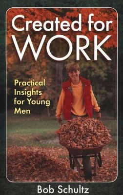 Created for Work: Practical Insights for Young Men   -     By: Bob Schultz