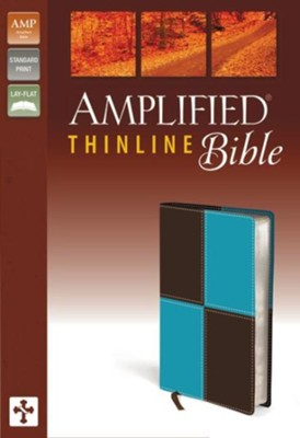 Amplified Thinline Bible, Italian Duo-Tone, Turquoise/Chocolate  -     By: Zondervan