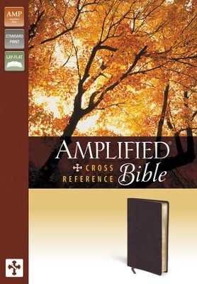 Amplified Cross-Reference Bible, Burgundy  -