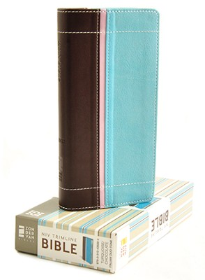 NIV Trimline Bible, Turquoise/Chocolate - Slightly Imperfect  -