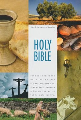 NIV Textbook Bible  -