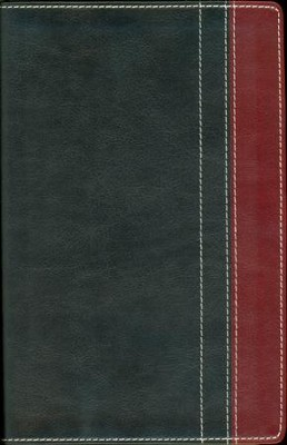 NIV Thinline Bible, Duo-Tone, Charcoal/Rich Red  - Imperfectly Imprinted Bibles  -