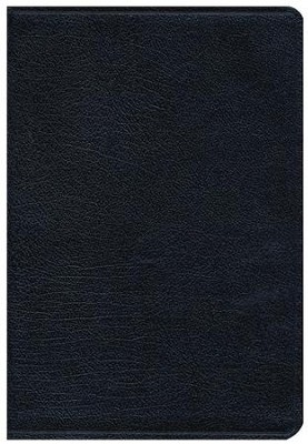 NIV Thinline Large-Print Bible--bonded leather, navy  -