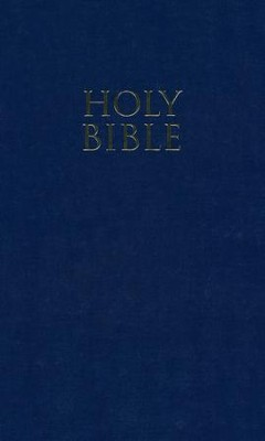 NIV Church Bible, Navy - Slightly Imperfect  -