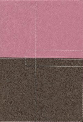 NIV Study Bible, imitation leather, berry creme/chocolate  - Imperfectly Imprinted Bibles  -