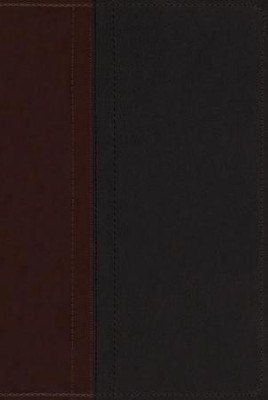 NIV Study Bible, Imitation Leather, Chocolate/Black - Imperfectly Imprinted Bibles  -