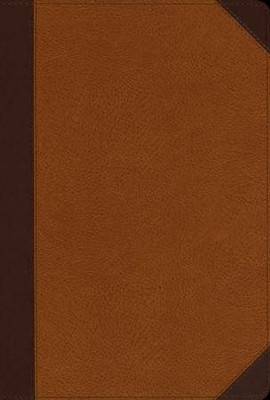NIV Zondervan Study Bible, Large-Print; Soft Leather-look, Chocolate/caramel  -     Edited By: D.A. Carson