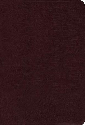 NIV Zondervan Study Bible--bonded leather, burgundy  -     Edited By: D.A. Carson