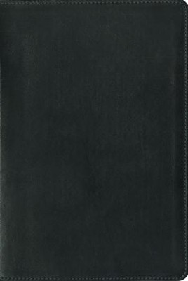 NIV Zondervan Study Bible--premium leather, ebony  -     Edited By: D.A. Carson