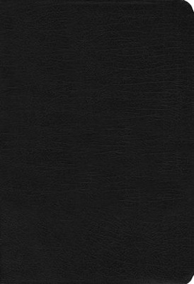 NIV Zondervan Study Bible--bonded leather, black (indexed)  -     Edited By: D.A. Carson     By: D. A. Carson