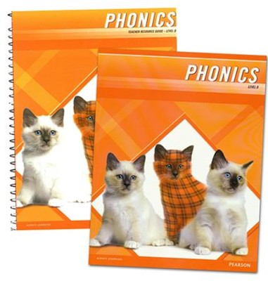 Plaid Phonics Level D Homeschool Bundle (2011  Copyright)  -