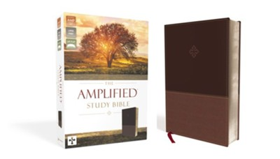 Amplified Study Bible, Large Print, Imitation Leather, Brown   -