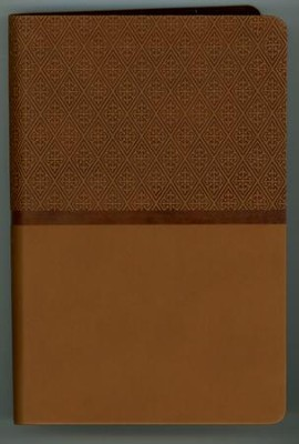 NIV ReadEasy Compact Bible--imitation leather, tan  -
