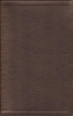 NIV Thinline Metallic Collection Bible, Bonded Leather, Bronze  -
