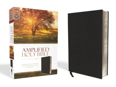 Amplified Thinline Holy Bible--bonded leather, black  -