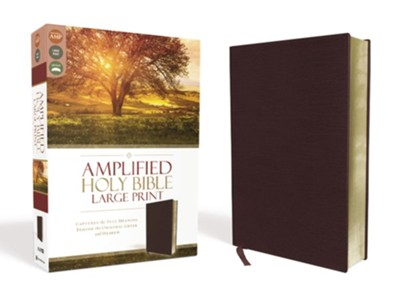 Amplified Large-Print Bible--bonded leather, burgundy  -