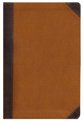 NIV Zondervan Study Bible, Imitation Leather, Tan/Brown Indexed  -     By: D.A. Carson