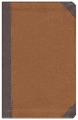 NIV Zondervan Study Bible, Personal Size, Imitation Leather Brown/Tan, Indexed  -     Edited By: D.A. Carson
