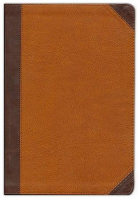 NIV Zondervan Study Bible, Large Print, Imitation Leather, Brown/Tan Indexed  -     Edited By: D.A. Carson