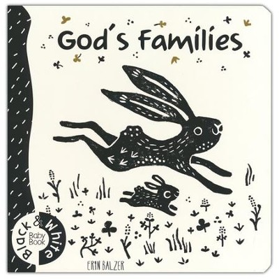 God's Families  -     By: Erin Balzer