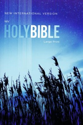 NIV Large-Print Outreach Bible--softcover, blue wheat  -