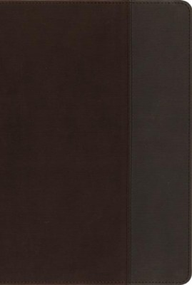 NIV, Quest Study Bible, Imitation Leather, Brown and Gray, Thumb Indexed  -     By: Christianity Today Intl.