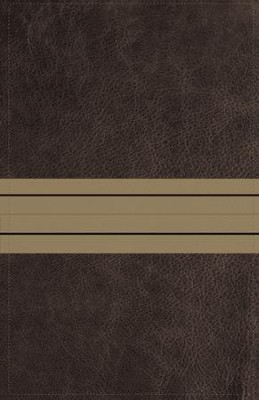 NIV Thinline Bible Large Print Brown and Tan, Imitation Leather  -