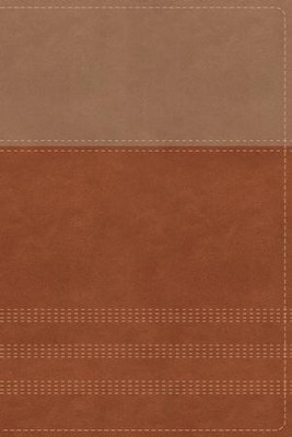 NIV Comfort Print Biblical Theology Study Bible, Imitation Leather, Tan and Brown  -     By: D.A. Carson